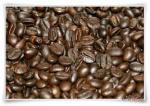 The Original and high quality Luwak Coffee /Civet Coffee